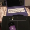 Laptop hp purple